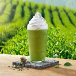스타벅스의 제주산 유기농 말차 음료, 이제 매장에서 매일 즐길 수 있다