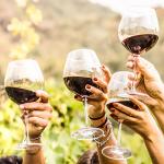 [명용진 바이어의 와이너리티 리포트] 2020년 이마트 '와인장터' 기획자가 밝히는 꼭 사야할 와인