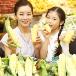 이마트, 일반 옥수수보다 당도 2~3배 높은 '초당옥수수' 판매