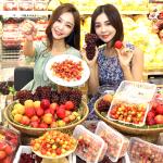 이마트, 국산 시즌과일 5종 모음전 진행