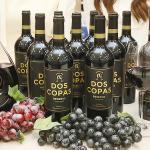 [명용진 바이어의 와이너리티 리포트] 와인차트 압도적 1위, '도스코파스 리제르바' 개발 풀 스토리