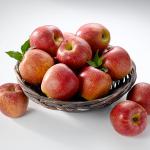 """이마트, """"역대급 금(金)사과된 햇사과"""" 농식품부와 손잡고 가격 낮췄다"""