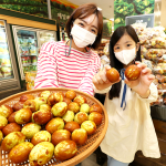 이마트, 제철 맞은 국민간식 '사과대추' 판매