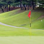 계절 스포츠로 거듭난 골프 특수를 잡아라!ㅣSCS뉴스PICK