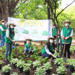 스타벅스, 고객과 파트너가 손잡고 서울숲공원에 약 300평 숲 조성